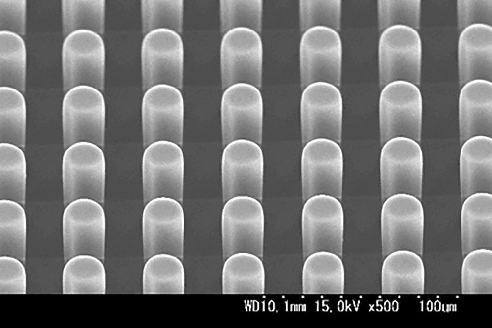 PDMSパターン ピラー形状 φ20μm 40μmピッチ 高さ50μm