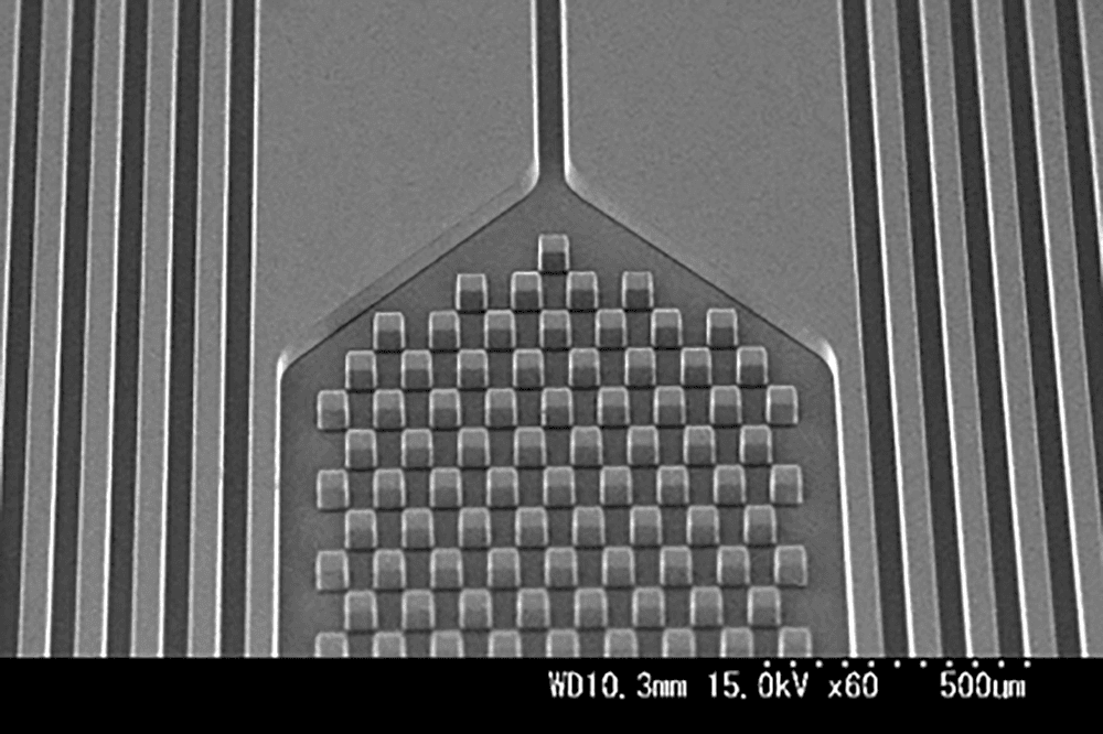 PDMSパターン チャンバーとフィルター(1) L/S : 50μm/50μm 高さ50μm