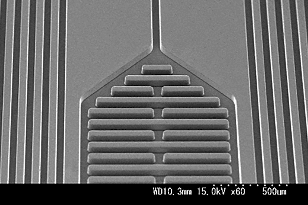 PDMSパターン チャンバーとフィルター(2) L/S : 50μm/50μm 高さ50μm