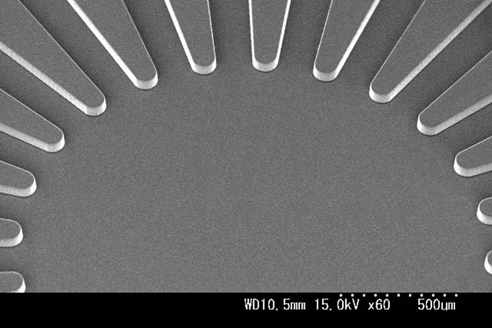 PDMSパターン 放射形状